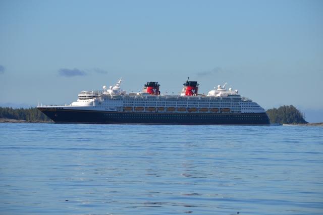 The Disney Wonders