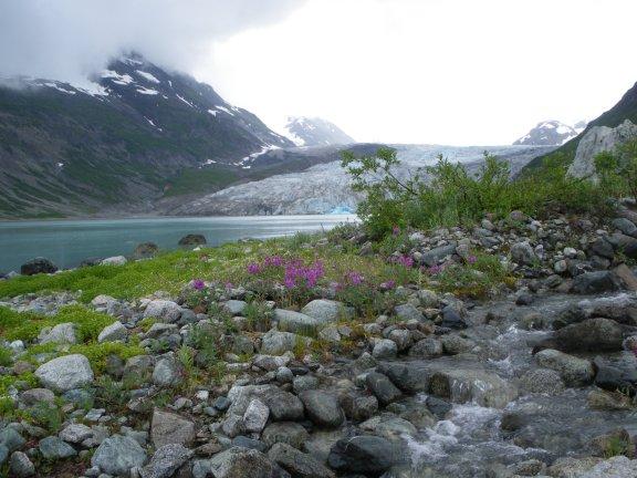 AlaskaD48ReidInlet 016