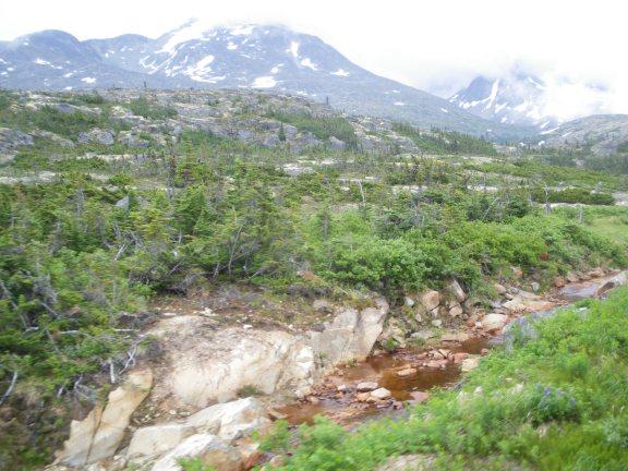 AlaskaWhitehorse 039