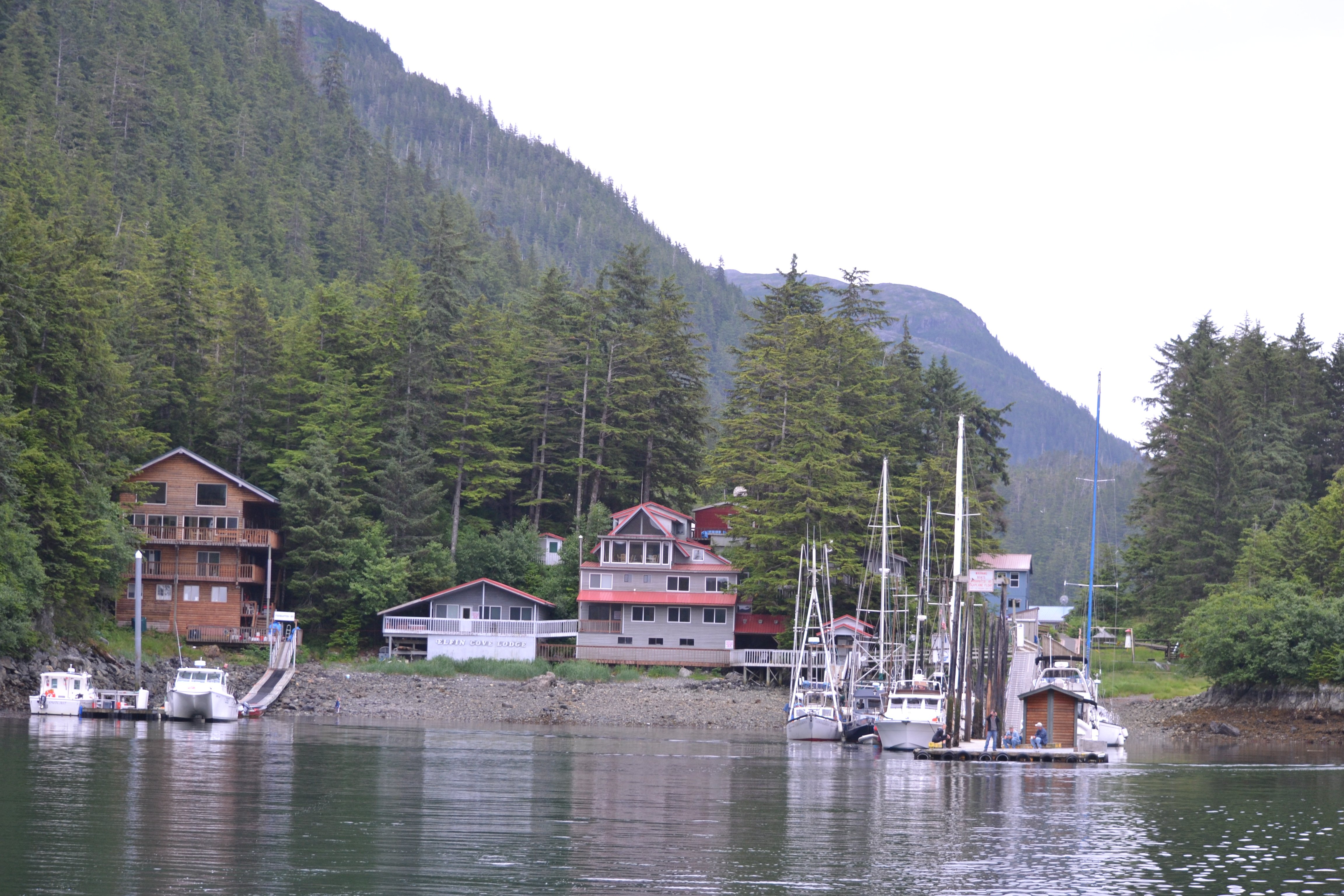 elfin cove divorced singles Your elfin cove real estate search starts here view 0 active homes for sale in elfin cove, ak and find your dream home, condo, townhome, or single family home with property listings on realtorcom.